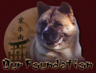 Yakedo's Foundation